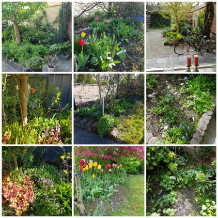 Tuin: collage lente 2017